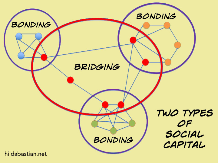 Diagram of 2 types of social capital: bonding and bridging