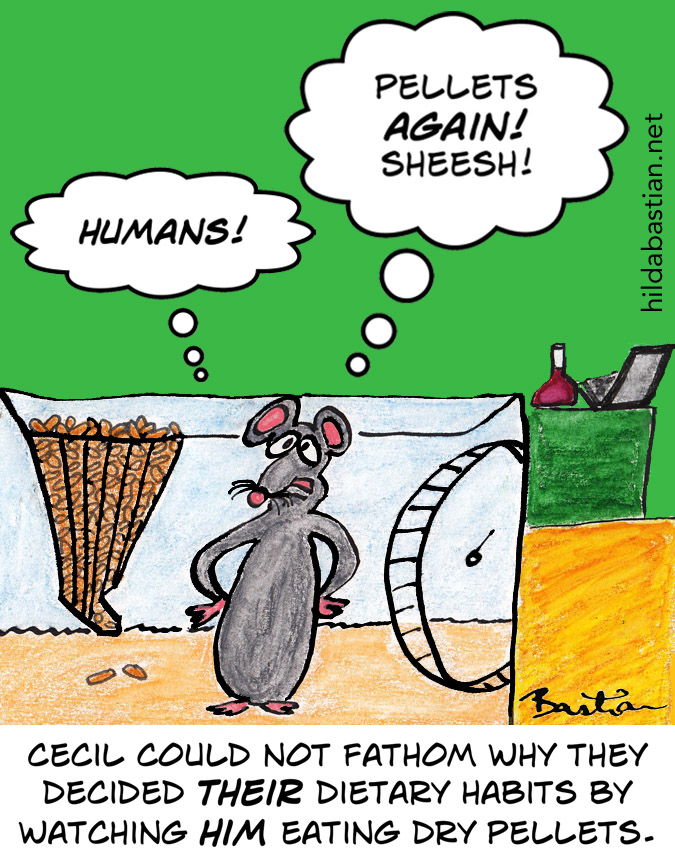 Cartoon of a lab rat who cannot fathom odd human logic