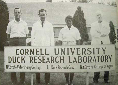 Photo of Cornell Duck Research Laboratory