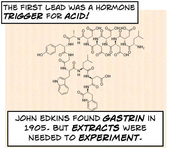 The first lead was a trigger hormone for acid, gastrin