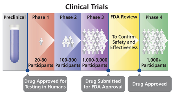 A chart showing preclinical to clinical trial phases up to and after drug approval - click the image to go to text explanation