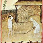 Painting of harvesting wheat